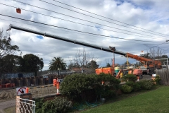 Bentleigh Rail Crossing Relocation